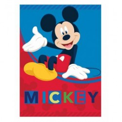 plaid mickey disney