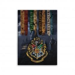 Plaid Harry Potter 100cm x...